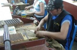 Cigar Factory Tours