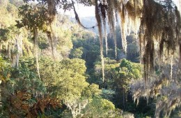 Miraflor Nature Reserve